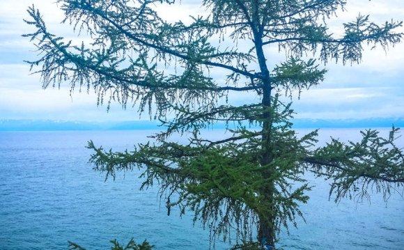 Байкал летом фотографии